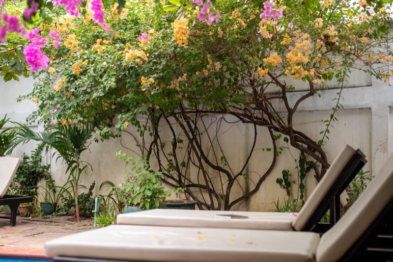 リクライニングシートと花