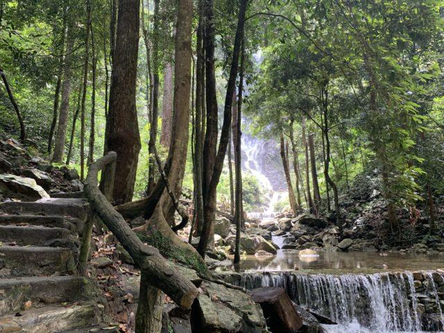 滝へ続く道