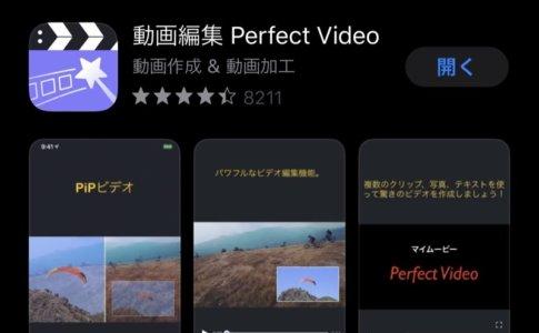 Perfect Videoのダウンロード画面