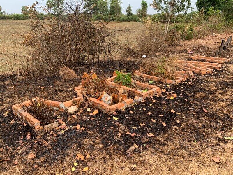 MIRAI花壇の焼け跡