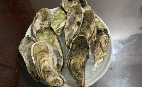 牡蠣を自宅で調理する食べ方