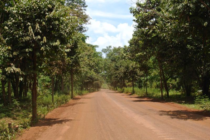 赤土の道路